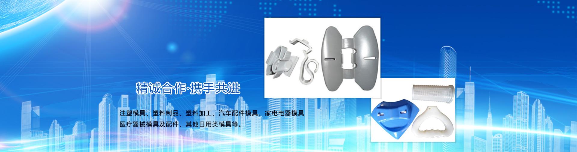 石家庄华宇塑料模具